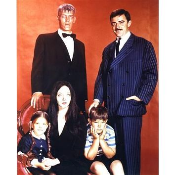 Addams Family, The Poster 11 inch x 17 inch poster