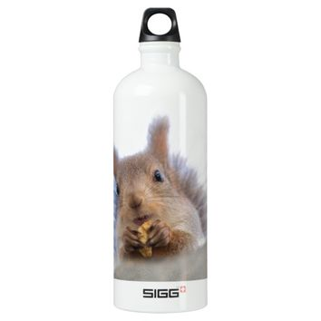 Squirrel with a walnut water bottle