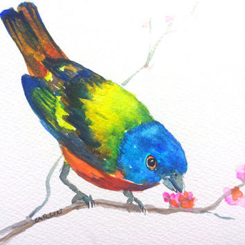 Colorful Bird, Painted Bunting, 5x7, Original Watercolor, Songbird, Avian, Wildlife, perched, male, backyard bird