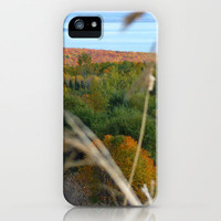 Fall in colors iPhone & iPod Case by Olivier P.