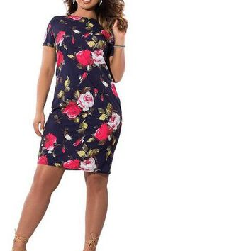 maisie Plus Size Floral Print Dress women Clothing blue pink short