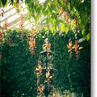 Airy Orchids Metal Print