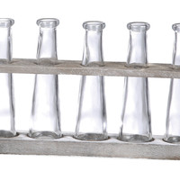 S/5 Glass Vases w/ Holder