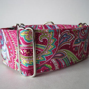 2 Inch Martingale Collar, Paisley Martingale Collar, Pink Martingale Collar, Paisley Dog Collar, Made in Canada, Sighthound Collar