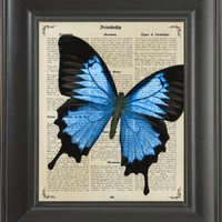Blue Butterfly  -printed on Frienship page. 250Gram paper.