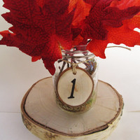 Rustic Table Numbers, Table Number Wedding, Anniversary Numbers, Christmas Party, Fall Wedding