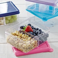 Spencer Dual Compartment Bento Box Container