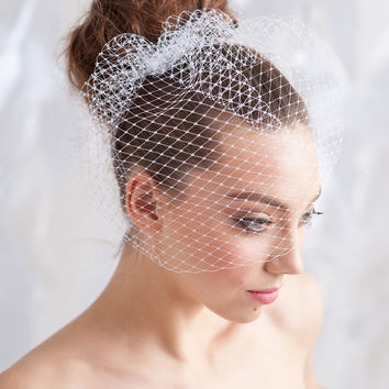 Birdcage veil , bridal veil, mini veil-  ready to ship