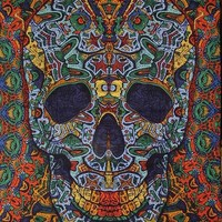 3 D Psychedelic Skull Tapestry Wall Hang 90 x 60