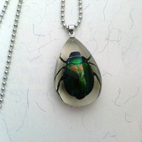 Real Insect Beetle Necklaces Yellow or Green