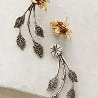 Miss Ellie Sweetheart Rose Earrings in Gold Size: One Size Earrings