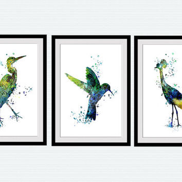 Exotic birds set of 3 watercolor posters watercolor birds, Hummingbird crane heron prints art, bird painting, watercolor artwork decor S5