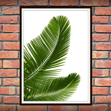 Tropical Leaf Print, Green Palm Art, Palm Art, Palm Leaves, Art Photo, Tropical Prints, Palm Leaf Prints, Tropical Decor, Green Decor *3*