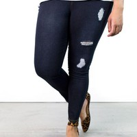 Seth Distressed Jeggings | Plus Size