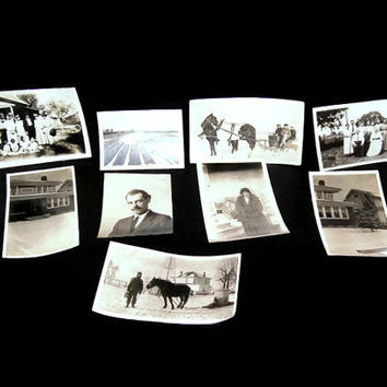 Vintage Photograph Lot, Black And White, Photography, People, Houses, Horses, Buggy, Vintage Photos, Collectible Photos, Black And White Pic