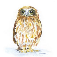 Owl Watercolor Giclee Print 11x14