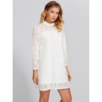 Frilled Collar Illusion Neck Lace Overlay Dress
