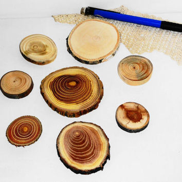 Wood slices mix various. Jewelry supplies, wall art, small wooden discs. Jewelry findings, wooden jewelry parts, jewellery making supply.