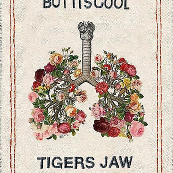 Tigers Jaw lyrics by TameImpalarulez