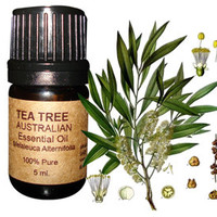 Tea Tree Essential Oil (AAA Australian) 5 ml
