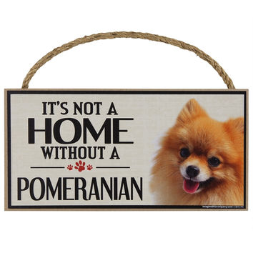 It's Not a Home Without a Pomeranian