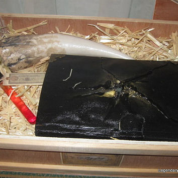 Basilisk Fang, Blood, and Diary Handmade Wizarding Replica Prop Set