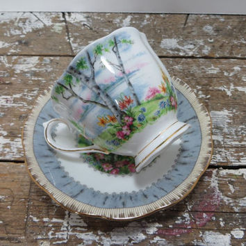 China Tea Cup Porcelain Teacup Royal Albert Teacup Silver Birch England Bone China