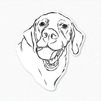 Bailey - Labrador Retriever - Decal Sticker