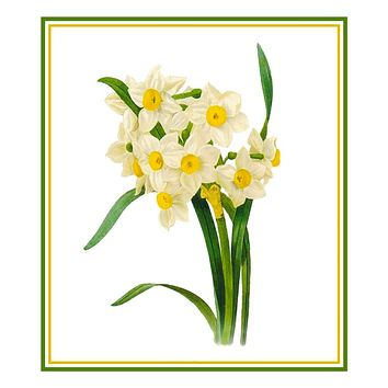 Narcissus Flowers Inspired by Pierre-Joseph Redoute Counted Cross Stitch Pattern
