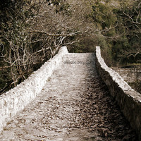 Stone Bridge, Sepia fall landscape photography, Greece romantic rustic nature photograph, home decor, wall art