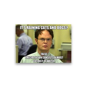 False: It's raining cats and dogs? Dwight Schrute Magnet