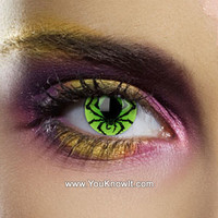 Alchemy Poison Spider Contact Lenses (Pair)