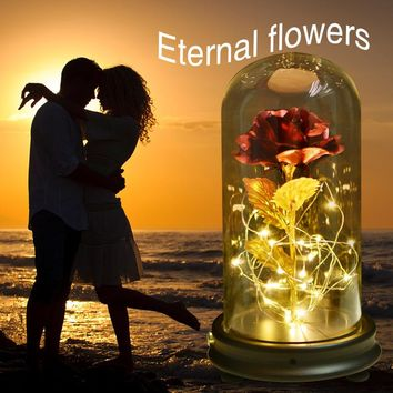 WR LED Gold Rose in Glass Dome Beauty and the Beast Red Rose Decorative Flowers Wreaths for Valentine Gift Mother Day Gifts