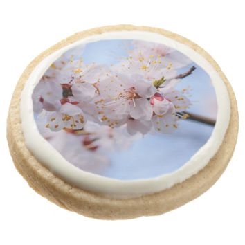 Japanese Apricot Blossom Round Shortbread Cookie
