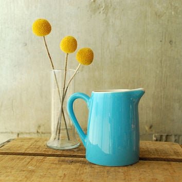 Robin's Egg Blue Ceramic Creamer Pitcher by vint on Etsy