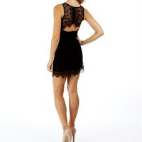 Black Lace Fitted Dresses