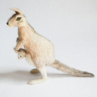 Kangaroo Taxidermy Real Fur Mini Toy