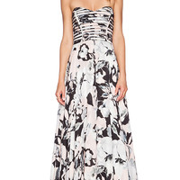 Parker Black Tamara Maxi Dress in Pink