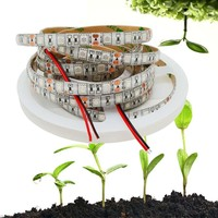 5m SMD 5050 Grow LED Flexible Strip Tape Light DC12V Red Blue 3:1 or 4:1 for Greenhouse Hydroponic Plant Growing