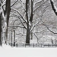 Central Park in Winter Photographic Print by Rudy Sulgan at eu.art.com