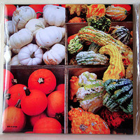 Gourds ceramic tile, farmer's market, autumn harvest, produce, mug, all occasion gift, orange wall decoration, decorated wall tile T653