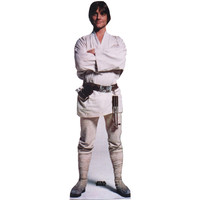 Luke Skywalker Talking Cardboard Standup