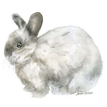 Gray Bunny Rabbit Watercolor 2