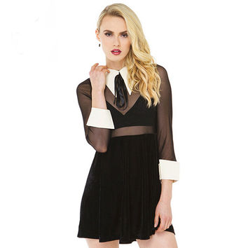 Black Sheer Mesh Cutout Collar Cuff Long Sleeves  A-Line Mini Dress