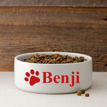 Personalize a Colorful Classic Large Dog Bowls - Happy Bars