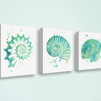 Seashell Art Print, Canvas Set, Watercolor Seashell, Coastal Decor, Nautical Wall Decor, Bathroom Wall Decor, Canvas Art, Seafoam Green