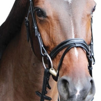 Henri de Rivel Piaffe Mono Crown Bridle with Flash