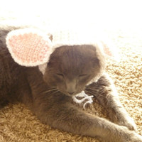 Cat Wearing Hat CROCHET PATTERN Bunny Hat for Cats Cat Halloween Costume for Cats Bunny Rabbit Hat Cat Supplies Cute Kawaii Hat Cat in Hat