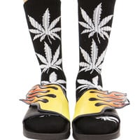 BLACK PLANTLIFE SOCKS