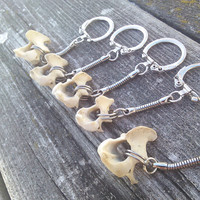 Raccoon Vertebrae Axis Bone Keychain, Bone Key Chain, Tribal  Boho Keychain, Real Animal Bone Jewelry, Spine Keychain, Wiccan Pagan Keychain